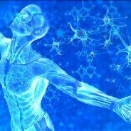 AVRIL présente une mise à niveau de la MATÉRIALISATION PHYSIQUE 4D DU CORPS selon le corps cristallin