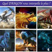 Quel DRAGON vous interpelle le plus?
