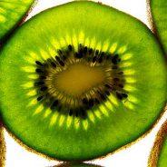 Les unités Bovis : Mesure de l'énergie vitale de la vibration des aliments